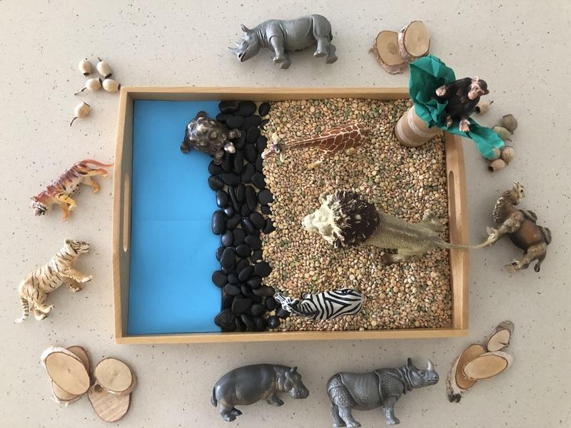 C66: Wildlife Animals Series