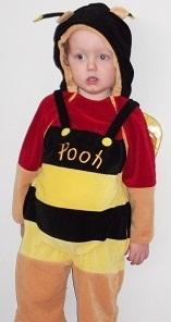 D042: Pooh Bear Bee Costume