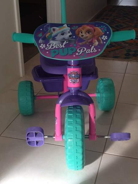 R5: Paw Patrol Tricycle