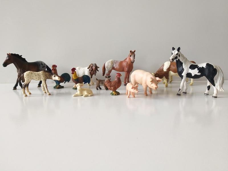 IMG116: Farm Animals