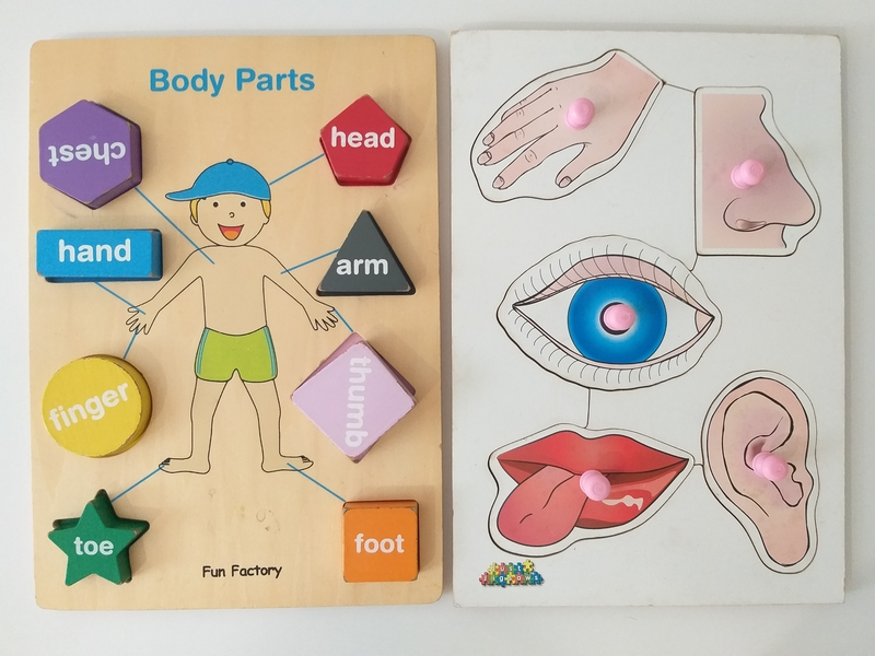 PG164: Body Parts and Senses Puzzles