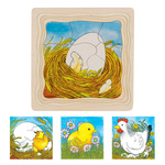 D1150: Chicken Egg Lifecycle Puzzle