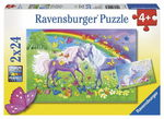 D1163: Rainbow Horses Puzzle