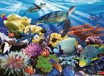 D1174: Ocean Turtles puzzle