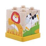 D1181: Safari Cube Puzzle