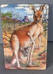 1728: Kangaroo Puzzle