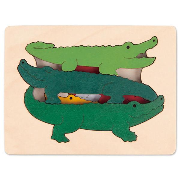 1245: Crocodile Puzzle