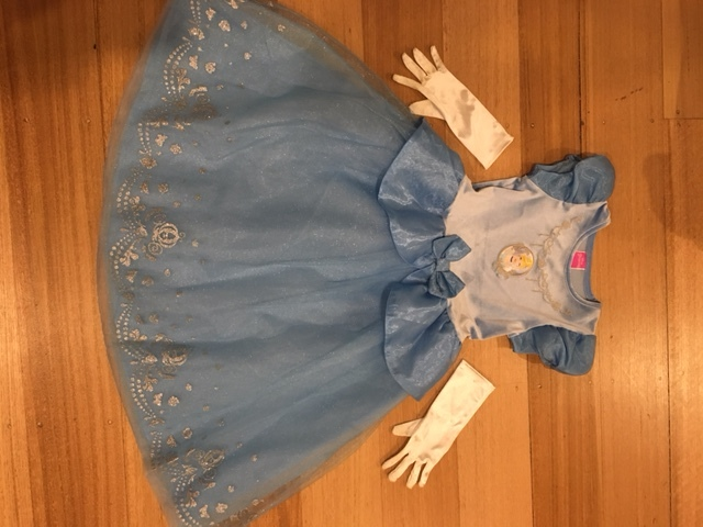 52: Blue Princess Dress