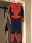 1090: Spider Man