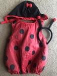 D57: Lady bug costume SIZE 1