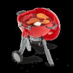 E385: Mini Weber BBQ