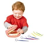 E734: Teeth and Dental Mirror Set