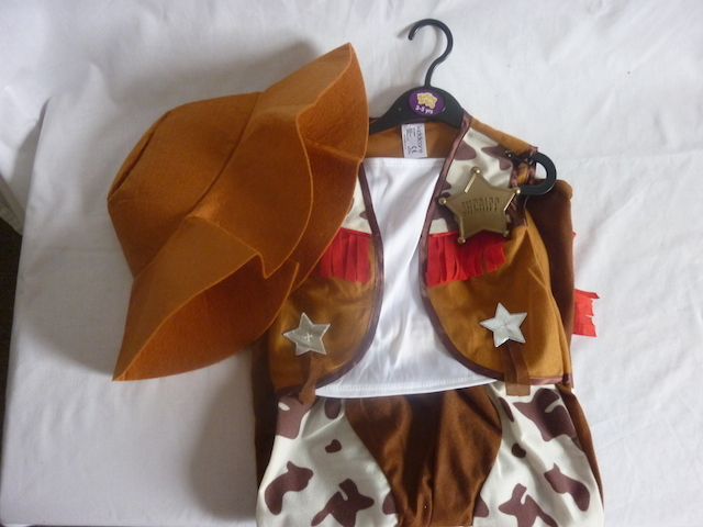 3213: Sheriff Costume