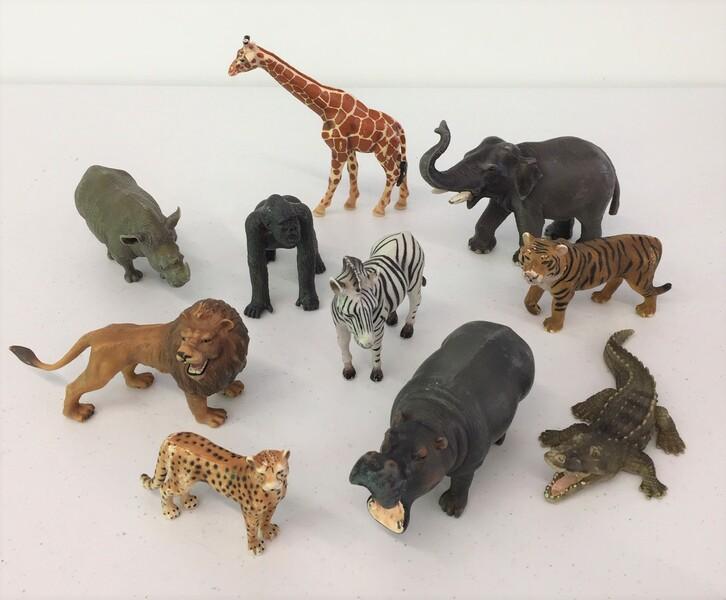 188: Wild animals roll call