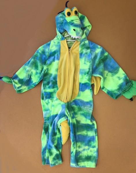227: Dragon Costume