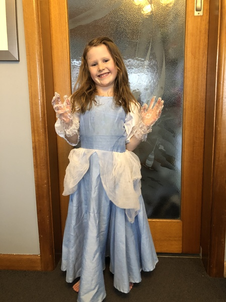 A63_3: Cinderella Costume