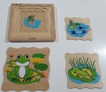 P203_22: Frog Lifecycle Puzzle