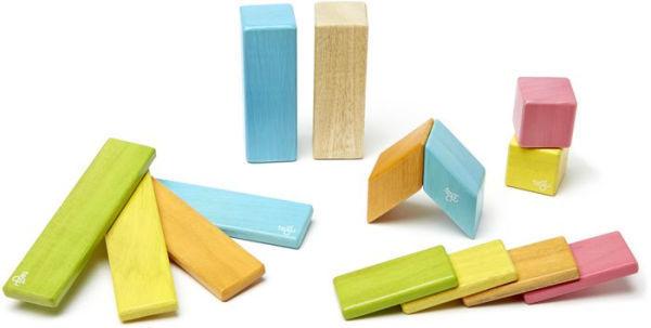C72: Tegu Magnetic Wooden Blocks (large set)