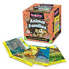 G194: Animal families brain challenge
