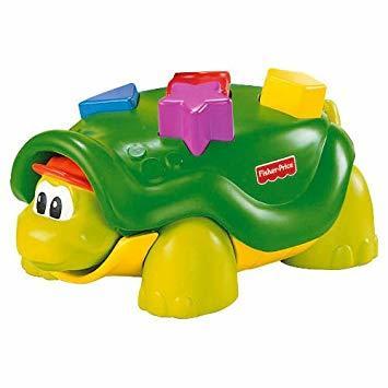 EL120: Tappy the Turtle