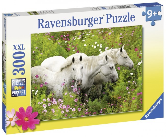 351: Horses in a Field Puzzle