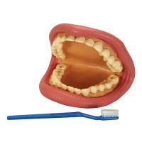 1829: Teeth #2