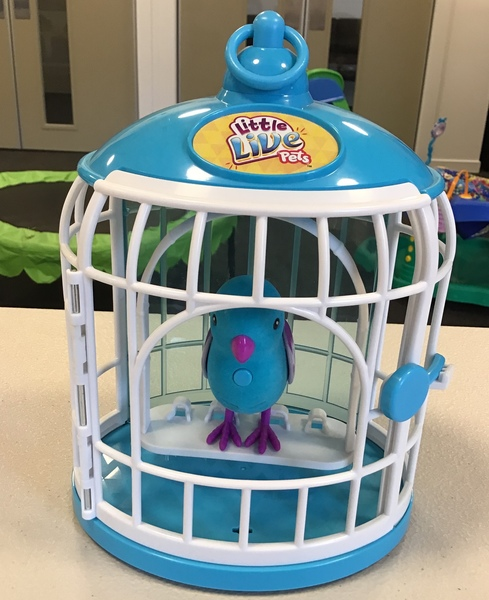 E1812: Little Live Pets Bird with Cage