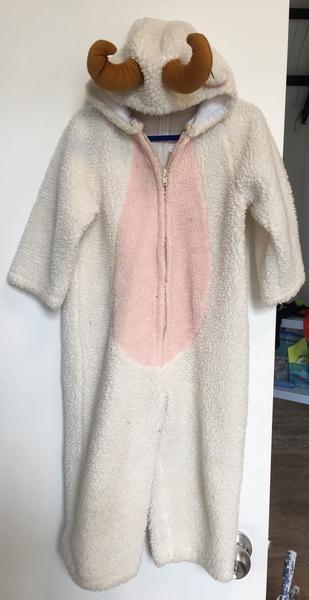 D1088: Ram  Overall Dress-up