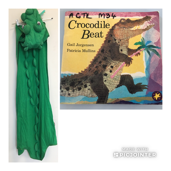 D34A: Crocodile Dress-up with book