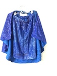 D1039: Blue Cape and Skirt