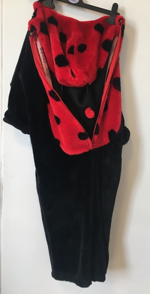 D1085: Lindy Ladybird - medium
