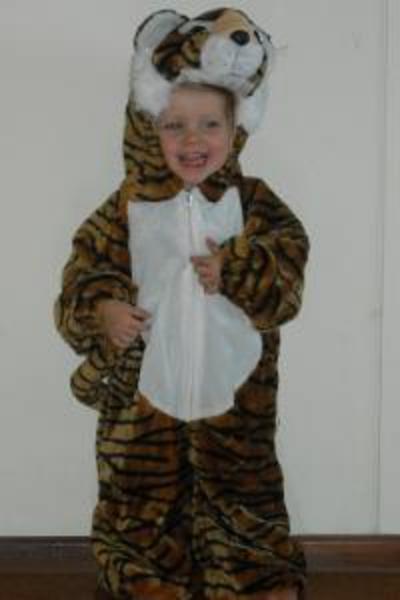 CO8: Tiger costume
