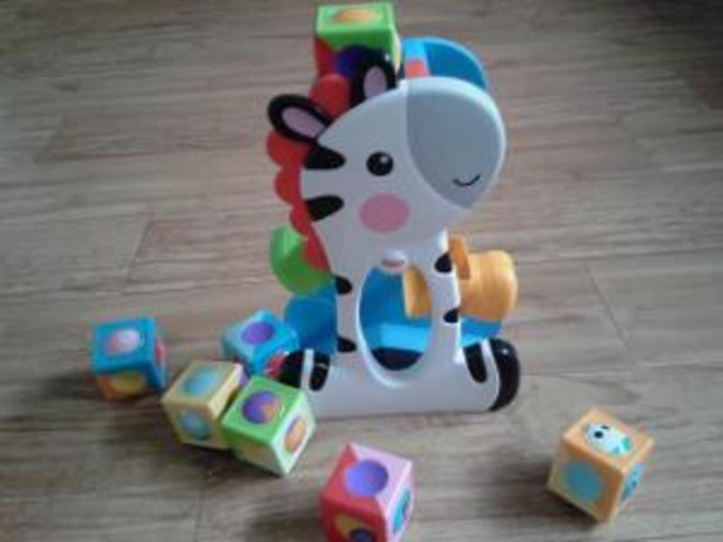 R253: Roller Blocks Tumbling Zebra