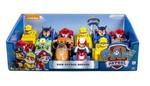 9051: Paw Patrol Racers