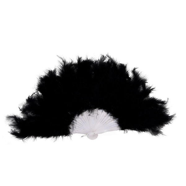R107: Black Feather Boa and Fan