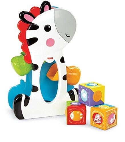 T3111: Roller Blocks Tumblin' Zebra