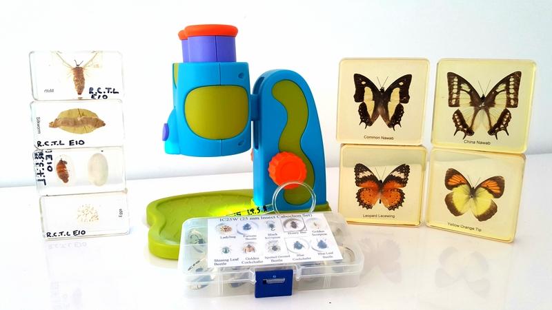 E10: Microscope and Insect Specimen Set