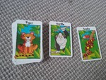 G048: African animal snap card game
