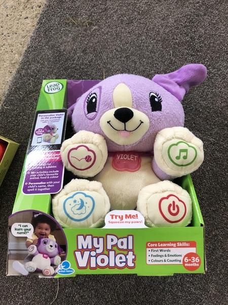 I070: My Pal Violet Leep Frog teddy