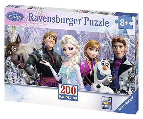 J9110: Frozen Panaroma Puzzle