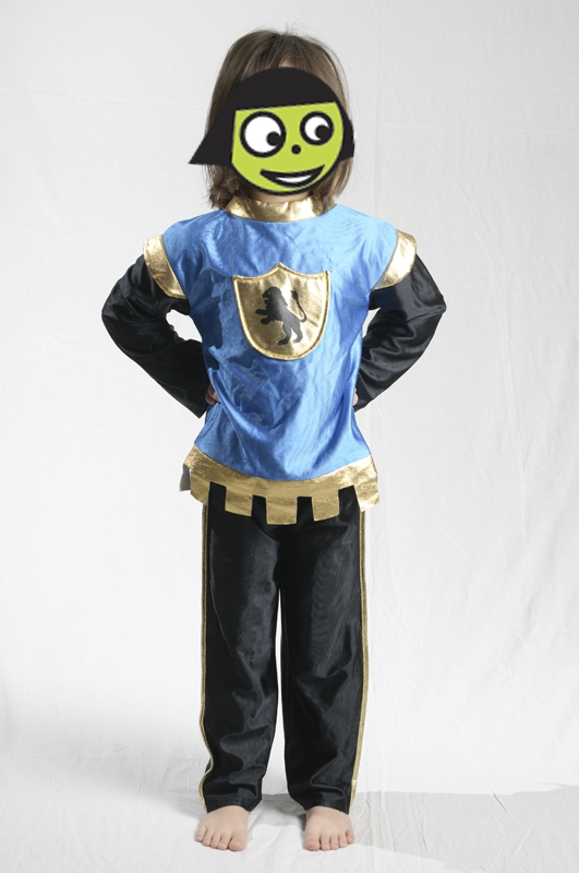 E4120: Knight Dress Up