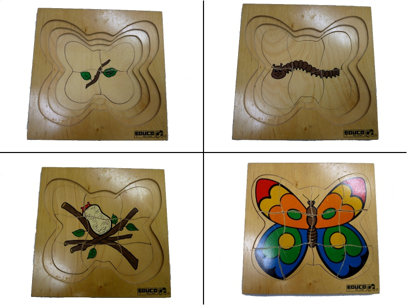 J861: Butterfly Puzzle