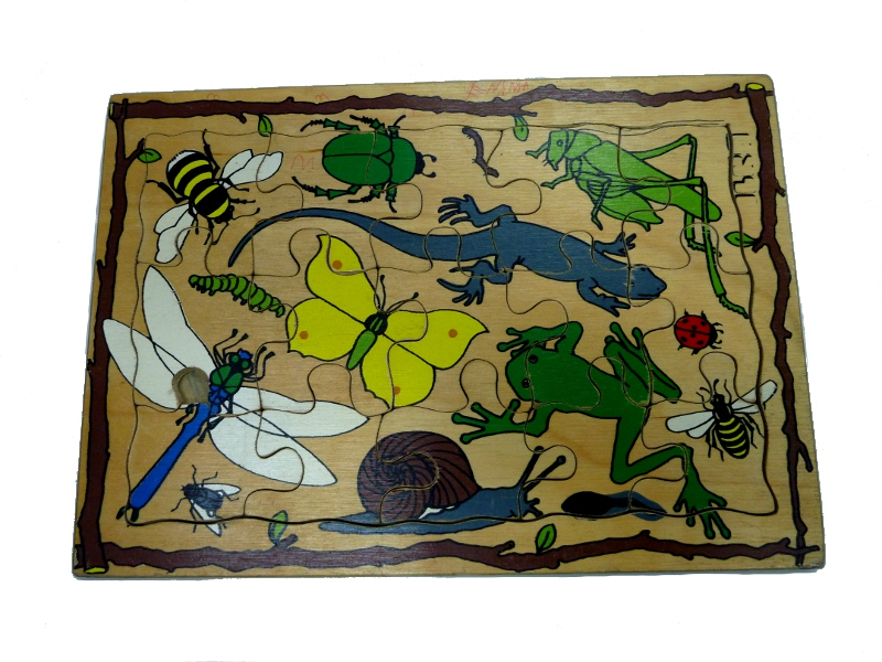 J8416: Insects inset puzzle