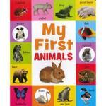 CBANI100011: My First Animals