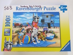 S063: NO DOGS ON THE BEACH PUZZLE