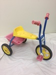 P206: TRICYCLE