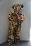 312: Cheetah suit