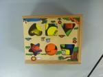 D007: 24 Piece Shape Sorter Box