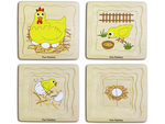 A56: Chicken Life Cycle Layer Puzzle