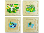 A57: Frog Life Cycle Layer Puzzle
